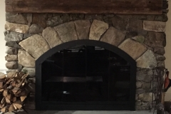 Custom Arch Fireplace door